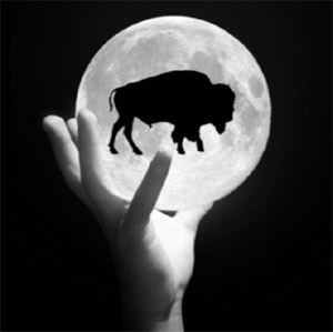 Bison Moon Group - Rutherford Manor